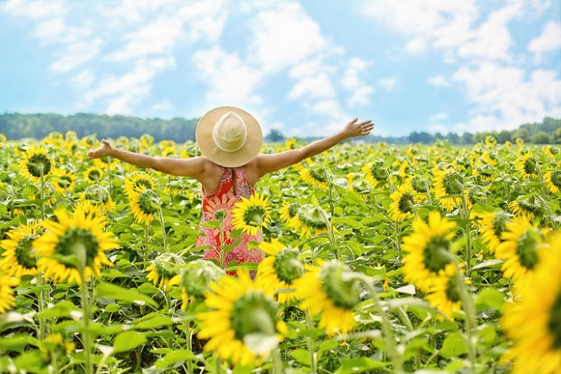 Woman in field of sunflowers.